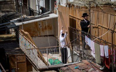 Sukkot: Drei Sorten Zweige und eine Zitrusfrucht als Symbol für jüdische Einheit